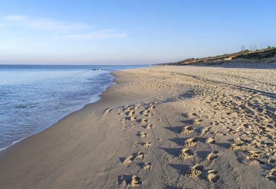 Plaża od strony otwartego morza na Półwyspie Helskim. Fot. Marcin Maziarz